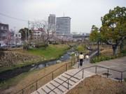 Sakura_001_1