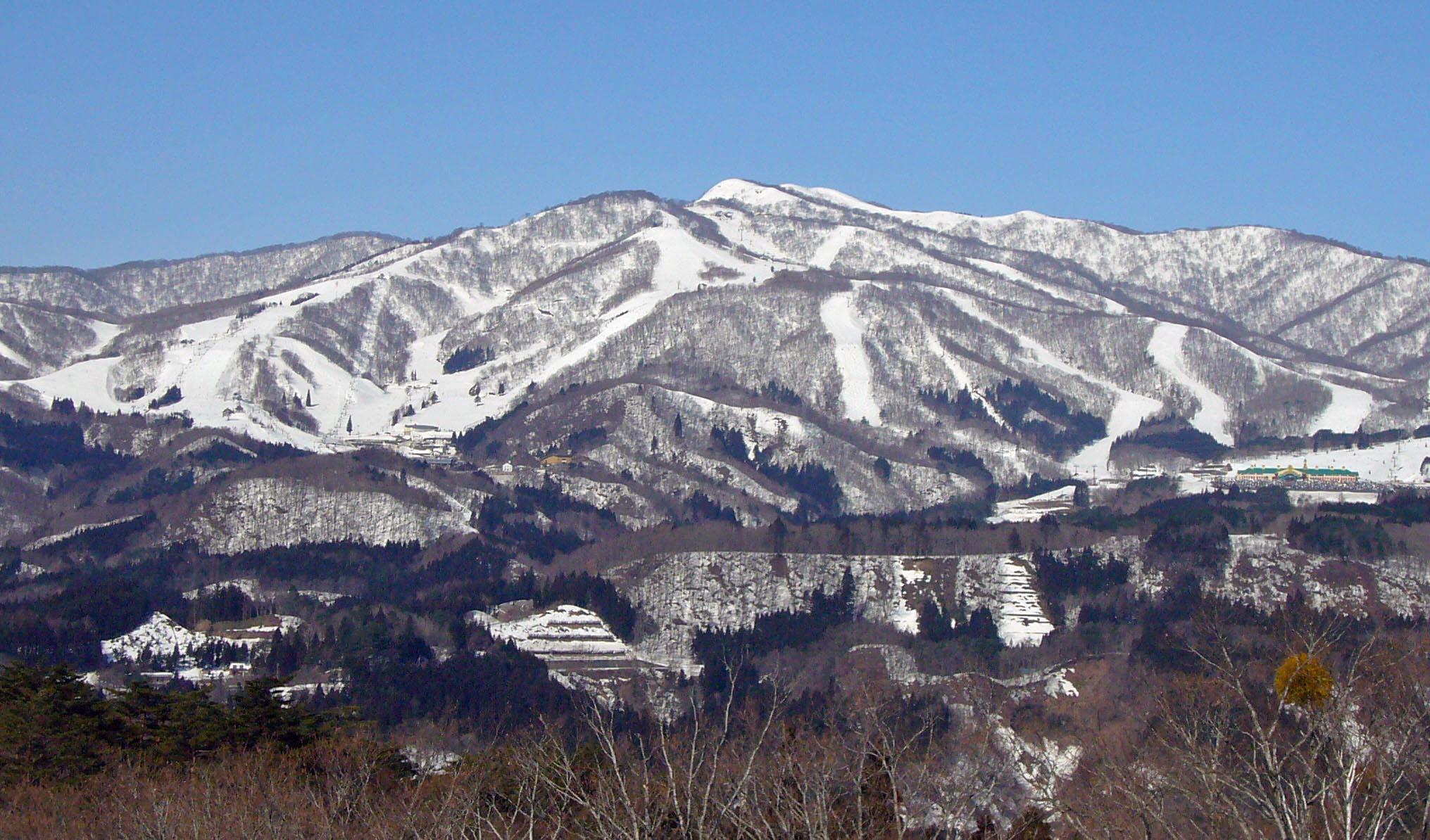 Syoukawa_001